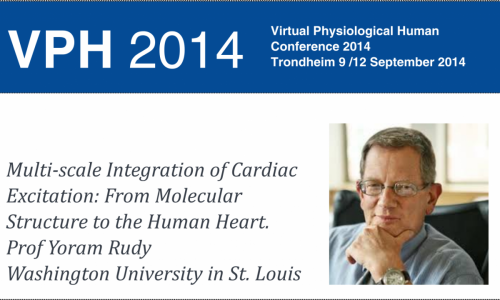 Prof Yoram's Lecture VPH2014